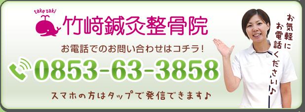 電話番号:0853-63-3858